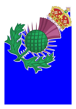 The thistle symbol of SCotland over a white background 矢量图像