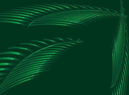 Silhouette in green of palm leavs and branches over a green background