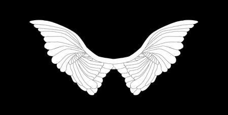 Un gran par de alas angelicales blancas extendidas sobre un fondo negro Ilustración de vector