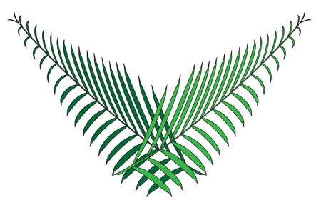 A pair of palm leaf branchs crossed over a white background