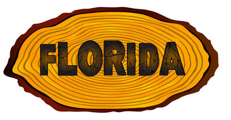 A section of a sawn log with the words FLORIDA over a white background