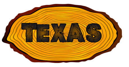 A section of a sawn log with the words TEXAS over a white background