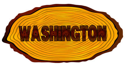 A section of a sawn log with the words WASHINGTON over a white background Illustration