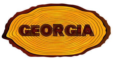 A section of a sawn log with the words GEORGIA over a white background