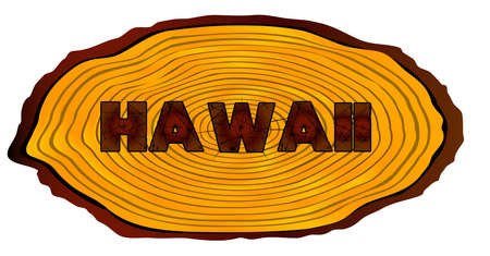 A section of a sawn log with the words HAWAII over a white background
