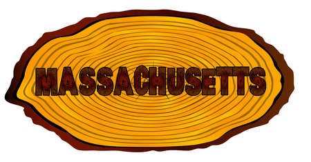 A section of a sawn log with the words MASSACHUSETTS over a white background Illustration