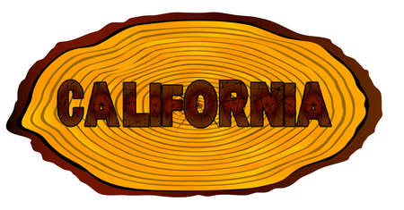 A section of a sawn log with the words CALIFORNIA over a white background