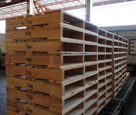 Four stacks of pine wood pallets inside a warehouse