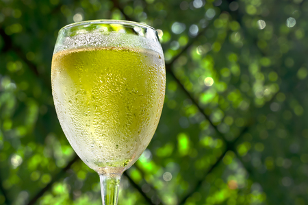 Misted wineglass with white wine are on a background of green foliage Stock Photo