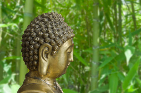 Head of golden Buddha in profile is on a background of bamboo thickets photo