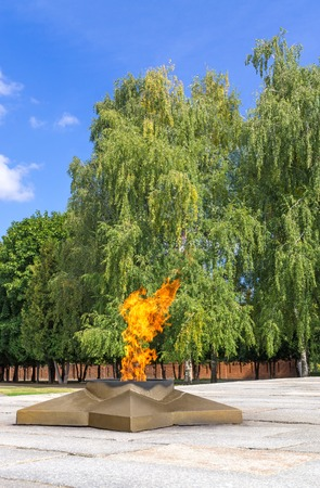 tomb of the unknown soldier: Burning eternal flame and star at mass tomb of soldiers on background of green trees. Blurred background
