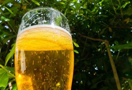 Mug of light beer.Blurred background of green foliage Stock Photo