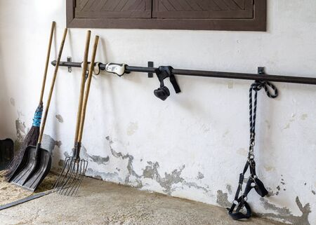 Implements for caring for horses stand against dirty wall of the old stables Reklamní fotografie