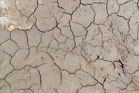 Fissures on dry sunlit ground during drought. Natural background