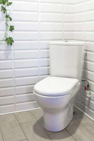 Flush toilet in corner of lavatory or bathroom. Fragment of interior Standard-Bild