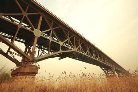 Looking up nostalgic tone of Autumn reed the foreground and steel bridge 