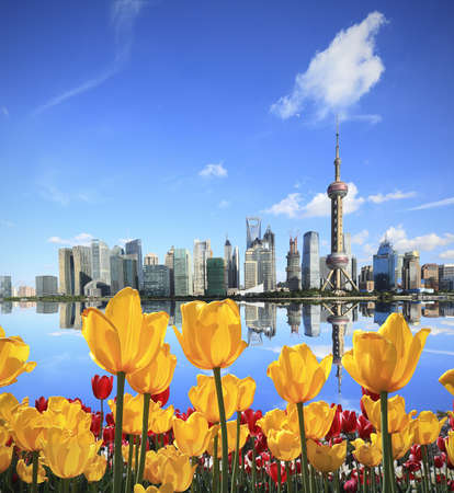 Shanghais landmark skyline tulips garden prospect of green concept in city landscape architecture  photo