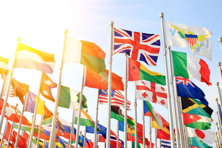 British Commonwealth and world flags is flying photo