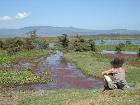 lake naivasha: Resting At Lake Naivasha