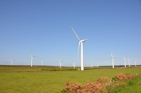 windfarm: Borders Parque E�lico