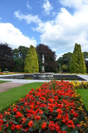 Centrepiece: Floral Garden Stock Photo