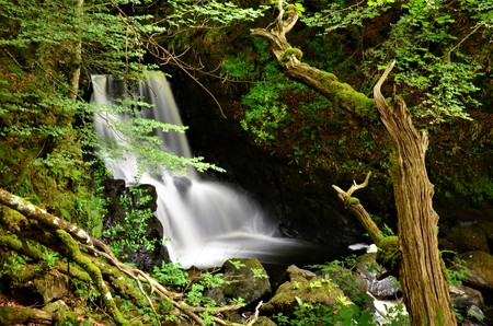 A view of a waterfall in Aros forest park on the isle of Mull 版權商用圖片