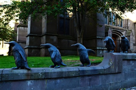 A view of penguin sculptures outside a church building in Dundee