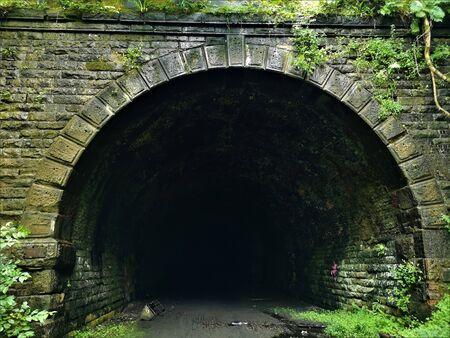 Widok dawnego tunelu kolejowego, obecnie nieużywanego i zarośniętego w odległym wiejskim lesie w pobliżu Glenfarg w Perthshire