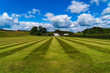 A freshly cut school field on a summers day with clouds in the sky Imagens