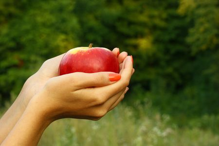 Womans hands sharing apple with someone. Nature background. Stock Photo