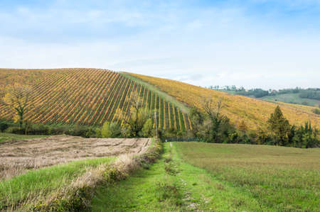 Countryside landscape during fall season in rural Italy Stock Photo