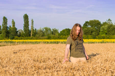 graying: Young caucasian - man with blond hair and long hairs among grain field Stock Photo