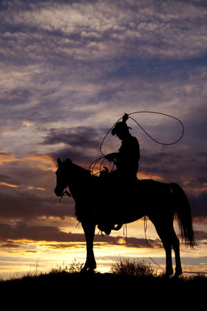 A cowboy is sitting on a horse in the sunset swinging a rope. Standard-Bild