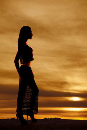 A silhouette of a woman in her lace skirt looking to the side Stock Photo - 21223847