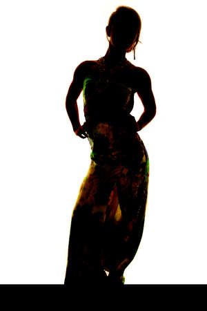 a silhouette of a woman in her long dress standing. photo