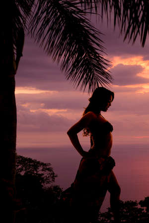 a silhouette of a woman looking to the side in her bikini and sarong, with a palm tree over head. photo