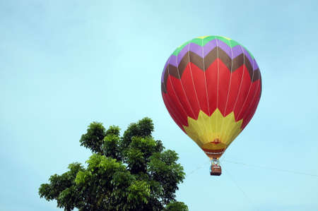 A colorful hot air balloon flight beside a tree