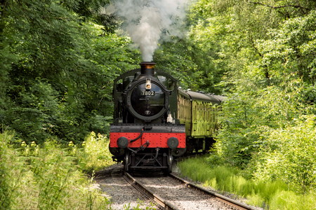 Steam train exiting a bend in woodland, smoking and facing forward