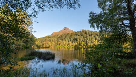 Known in Gaelic as Sgorr na Ciche, the Pap of Glencoe is a familiar landmark around the lower end of the glen and Loch Leven. Pictured here with the reflection of the mountain in the water 免版税图像