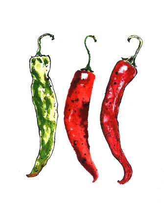 Watercolor colorful vegetables set red green hot chili peppers, capsaicin closeup isolated on white background. Hand painting on paper illustration Фото со стока - 128943588