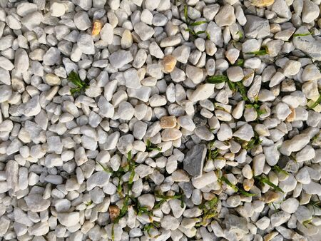Top view of pebbles, sand and seashells, wet by sea water waves. Natural marine pattern, grey beige blue orange mosaic texture, colorful background. Fresh summer holiday inspiration, relaxation mood. Banco de Imagens