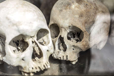 Skulls from a mass grave in Cambodia photo