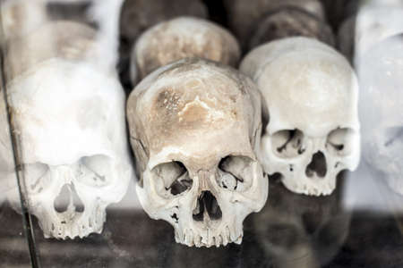 retrieved: Skulls on display after being retrieved from a mass grave in Cambodia