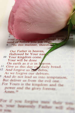 A Bible open to the Lords prayer with a pink rose above the prayer.