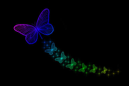 Florescent Colorful Butterfly