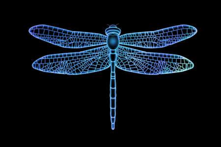 Lichtdurchlässige Libelle Standard-Bild - 67515525