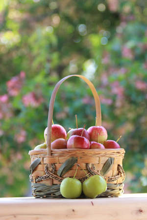 Basket of Crabapples Stock Photo