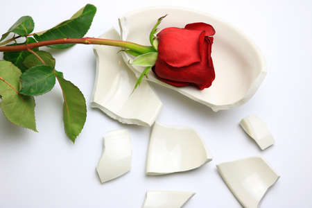 Red Rose laying on a broken bowl Stock Photo