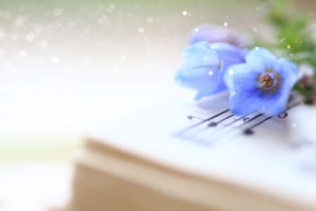 Bluebell flowers displayed on music notes