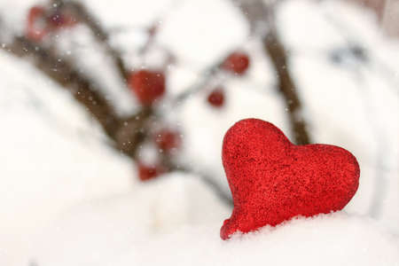 Red glitter heart in the winter snow Stock Photo